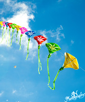 Chinese Kite Flying - 80 kites on 1 string